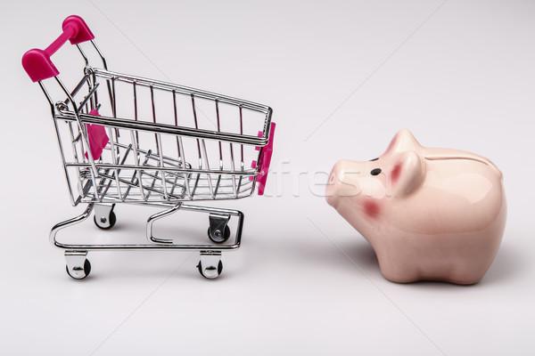 shopping cart versus pig money box Stock photo © jarin13