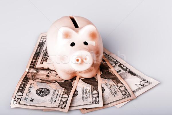 Disznó bank dollár bankjegyek pénz doboz Stock fotó © jarin13