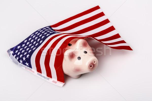 pig money box and USA flag Stock photo © jarin13