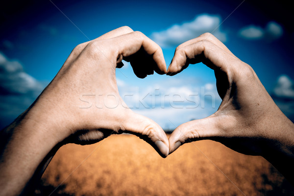 Love shape hands - heart on yellow field and blue sky Stock photo © jarin13