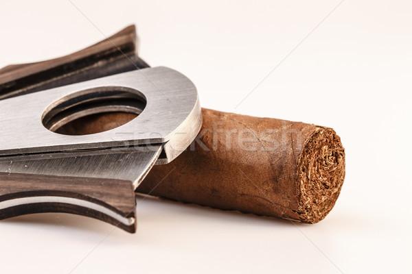 Cigarro blanco caro hoja salud humo Foto stock © jarin13