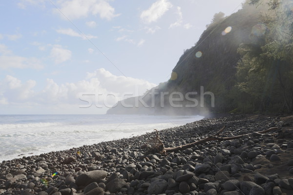 beautiful black stone beach - waipio valley, hawaii Stock photo © jarin13