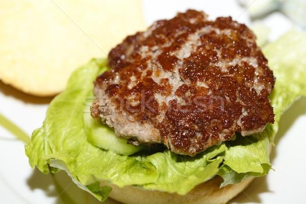 Stockfoto: Hamburger · mooie · home · restaurant · vlees