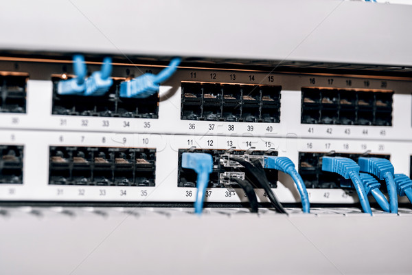Server panel with cables and connectors Stock photo © jarin13