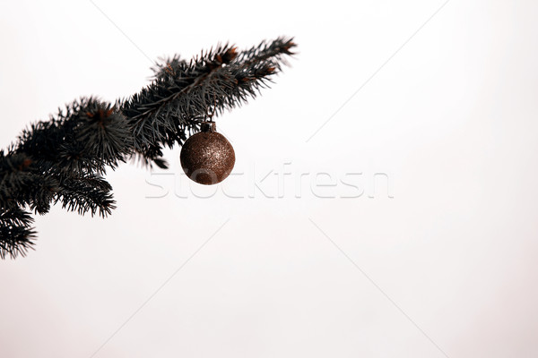 Noel ağacı dekorasyon altın ampul ahşap doğa Stok fotoğraf © jarin13