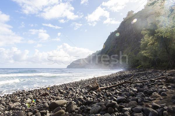 Mooie zwarte steen strand vallei Hawaii Stockfoto © jarin13