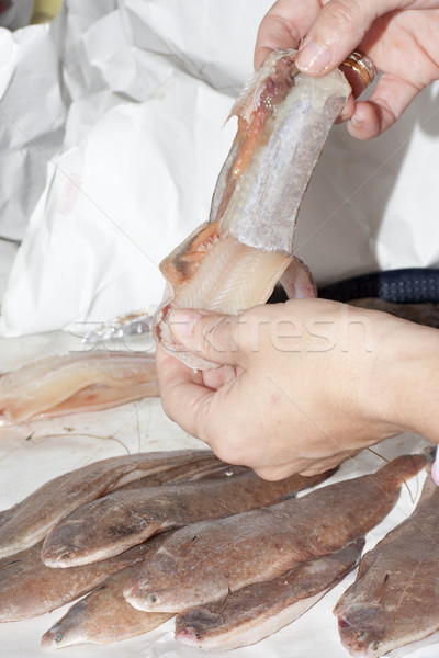 fishmonger cleaning sole Stock photo © jarp17