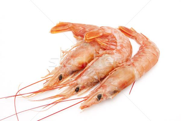 üç karides pişmiş hazır deniz ürünleri Stok fotoğraf © jarp17