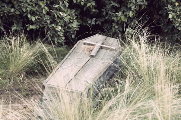 Caixão velho atravessar topo madeira Foto stock © jarp17