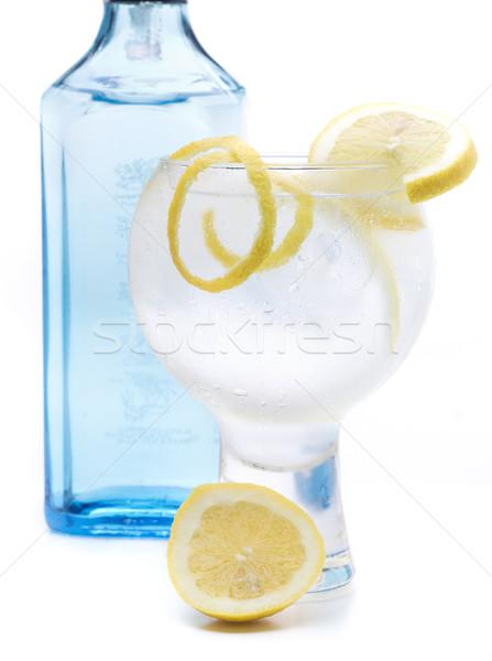 Azul ginebra uno famoso vidrio botella Foto stock © jarp17