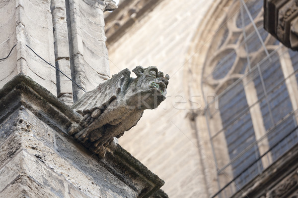 gargoyle Stock photo © jarp17