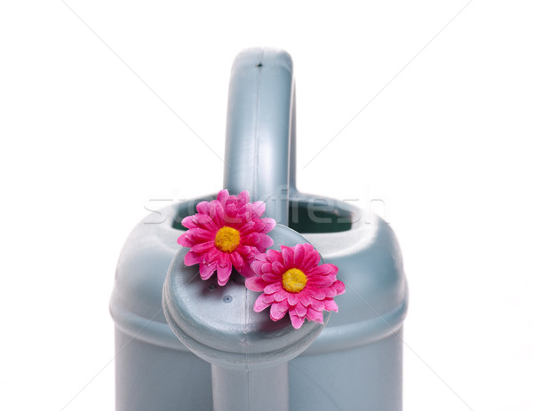 sprinkler with pink flower Stock photo © jarp17