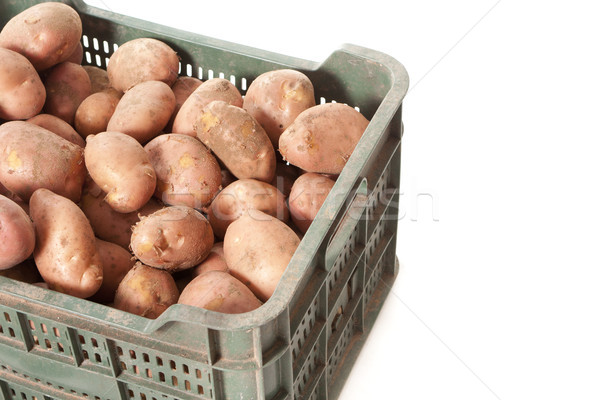 potatoes green box Stock photo © jarp17