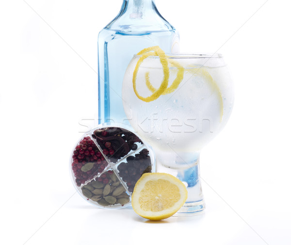 full gin & tonic Stock photo © jarp17