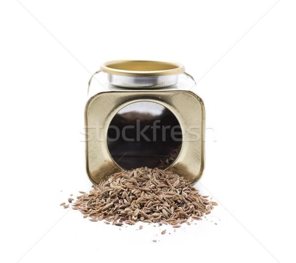 Spice coriandolo spezie cultura Foto d'archivio © jarp17
