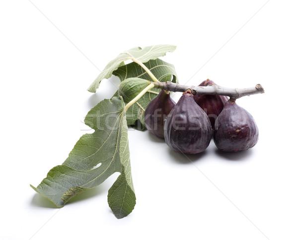 Liści figa owoców mały biały diety Zdjęcia stock © jarp17