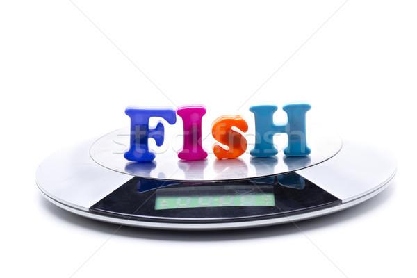 Hal súly kicsi digitális használt főzés Stock fotó © jarp17