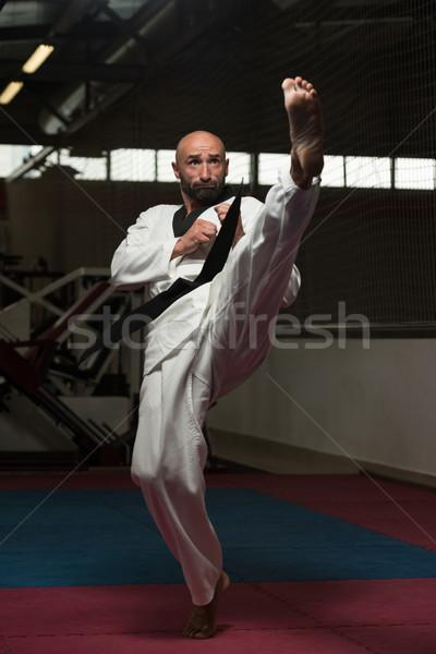 Taekwondo savaşçı uzman kavga olgun adam Stok fotoğraf © Jasminko