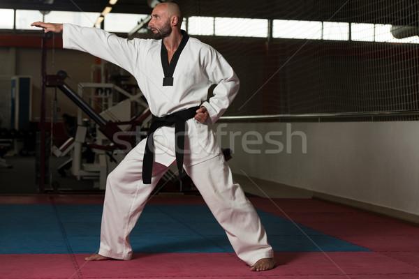 Olgun adam karate olgun erkekler spor Stok fotoğraf © Jasminko
