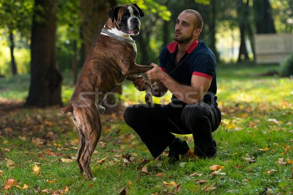 Man Playing With Dog In Park Stock photo © Jasminko