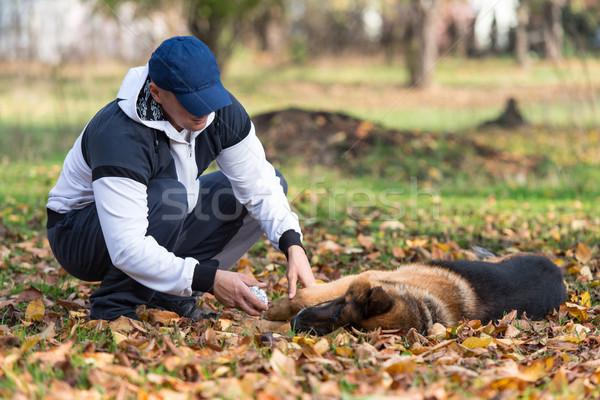 Stockfoto: Man · hond · herder · bos · mannelijke · lifestyle