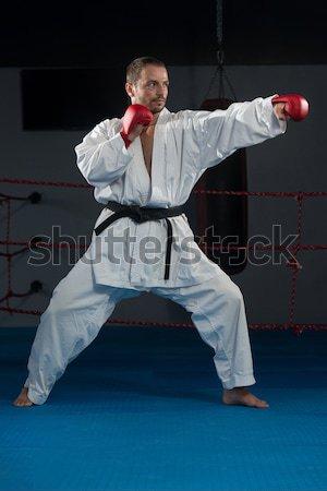 Taekwondo Fighter Pose Stock photo © Jasminko