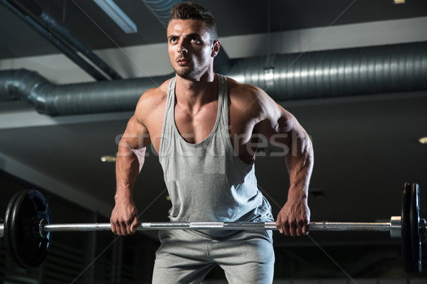 Bent Over Row Workout For Back Stock photo © Jasminko