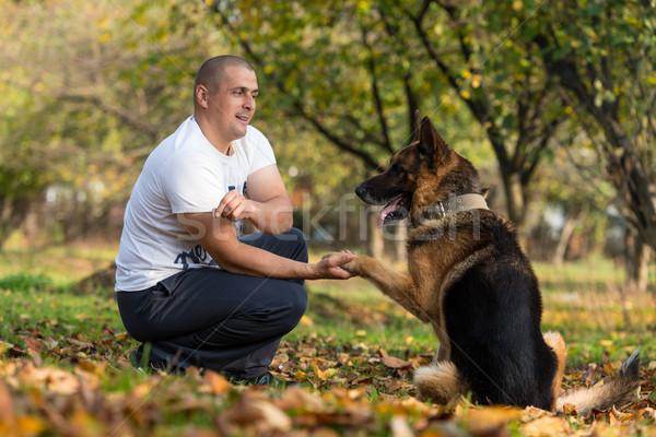 男 犬 羊飼い 森林 男性 ライフスタイル ストックフォト © Jasminko