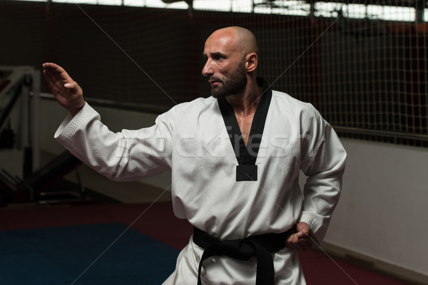 Taekwondo Fighter Expert With Fight Stance Stock photo © Jasminko