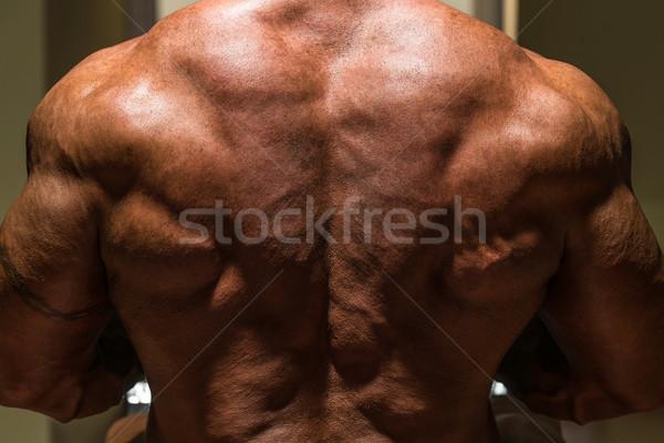 Masculino musculação de volta homem esportes corpo Foto stock © Jasminko