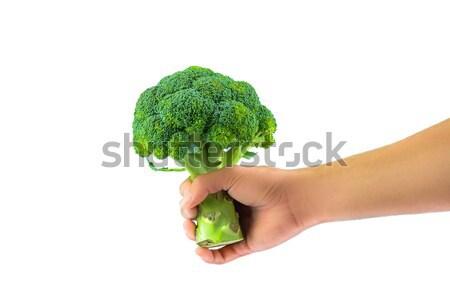 Fresh Broccoli Stock photo © javiercorrea15