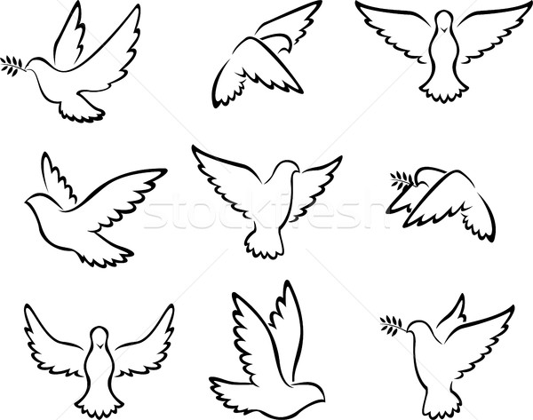 коллекция голубя птиц логотип мира свадьба Сток-фото © jawa123
