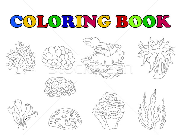 coloring book of beautiful coral collection Stock photo © jawa123