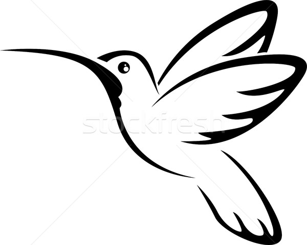Tattoo hummingbird for you design Stock photo © jawa123
