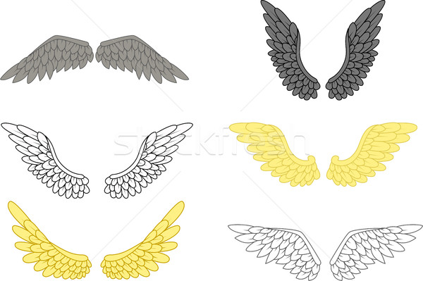 Angyal szárny szett terv művészet szárnyak Stock fotó © jawa123