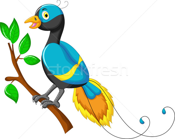 cute paradise bird cartoon Stock photo © jawa123
