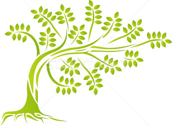 Foto d'archivio: Silhouette · albero · legno · foresta · design
