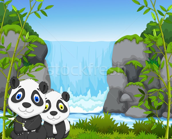 Engraçado desenho animado panda cachoeira bebê grama Foto stock © jawa123