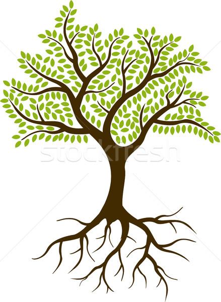 tree silhouette Stock photo © jawa123