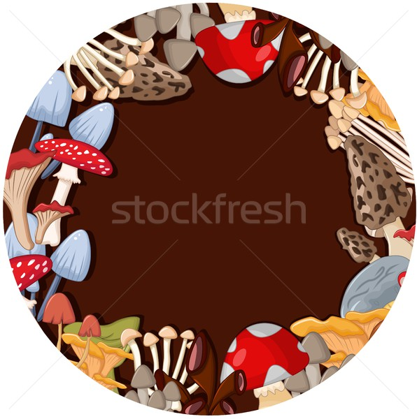 different kinds of mushrooms on brown circle background Stock photo © jawa123