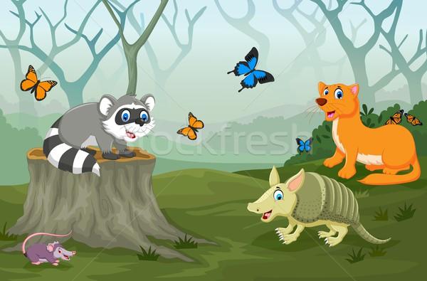 Engraçado animal profundo floresta paisagem grama Foto stock © jawa123