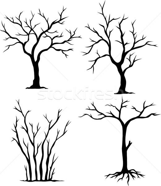 Foto stock: Coleção · morto · árvores · árvore · madeira · fundo