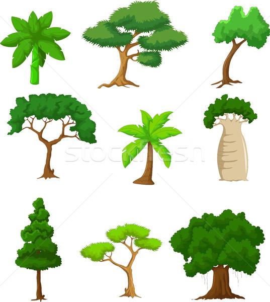 дерево Cartoon дизайна саду искусства Palm Сток-фото © jawa123