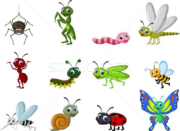 Gyűjtemény rovarok rajz zöld piros állatok Stock fotó © jawa123