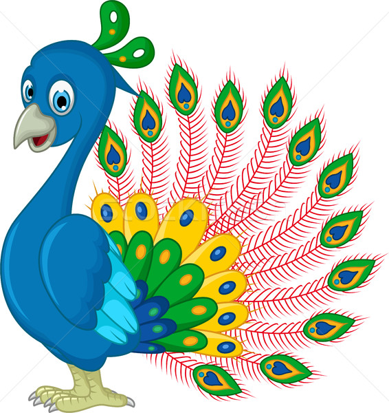 Pavo real Cartoon diseno fondo belleza aves Foto stock © jawa123