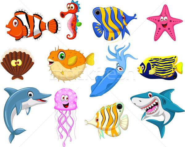 Foto stock: Mar · vida · desenho · animado · conjunto · água · peixe