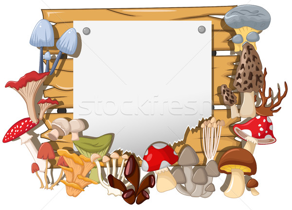 different kinds of mushrooms on white board background Stock photo © jawa123