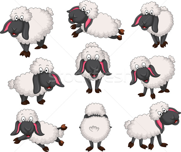 Stock photo: Nice set of vector cartoon sheep for your design
