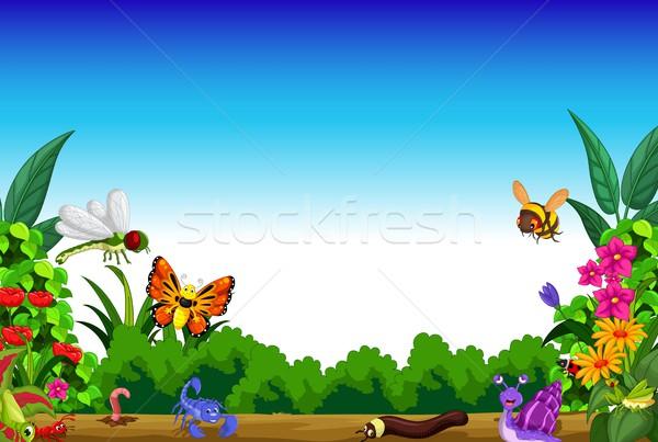 コレクション 昆虫 午前 表示 自然 ストックフォト © jawa123