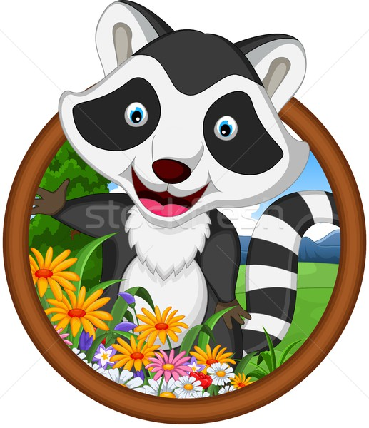Stock photo: raccoon cartoon in frame